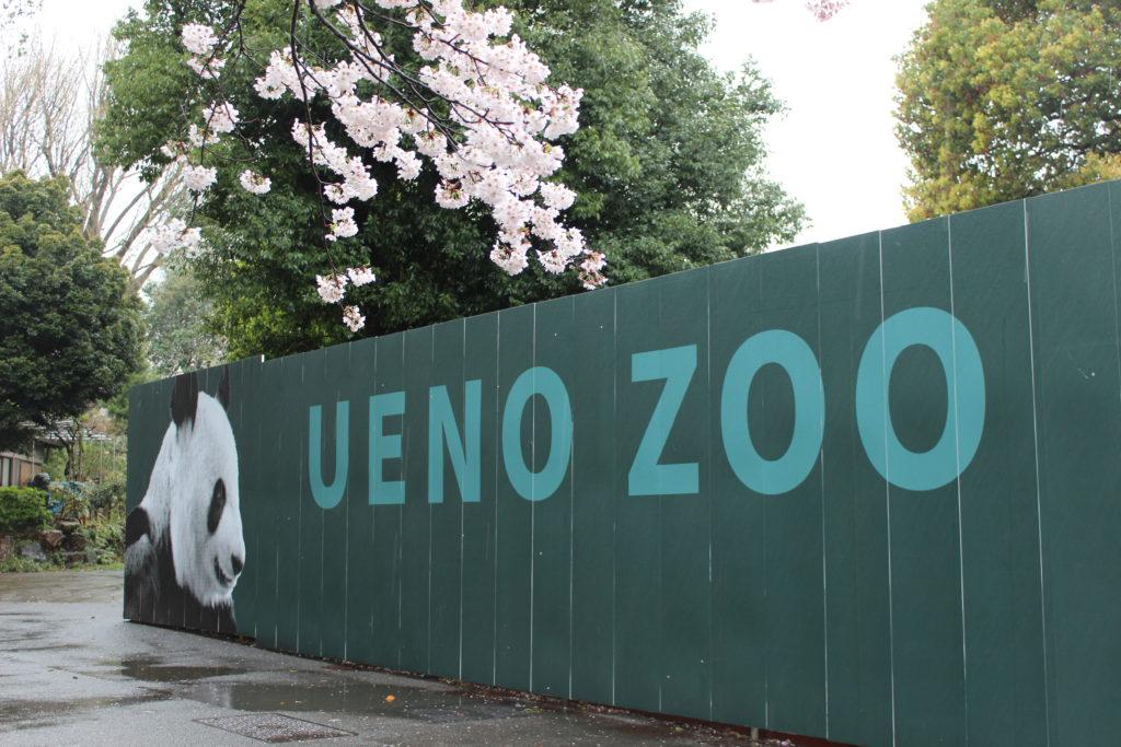 Zoo di Ueno