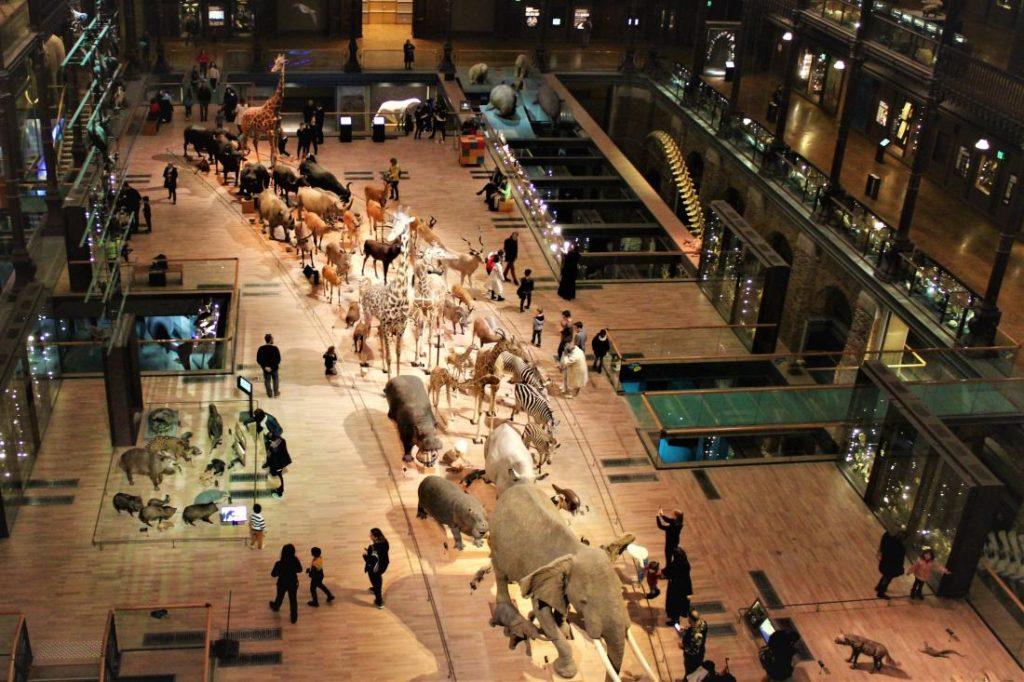 Grande Galerie de l'Evolution vista dall'alto