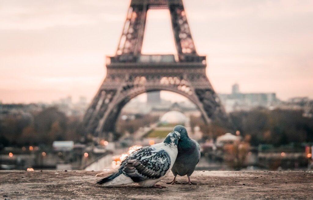 film per San Valentino a Parigi